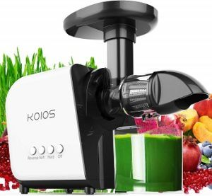 Slow Masticating Juicer Extractor B07FKFRBCX