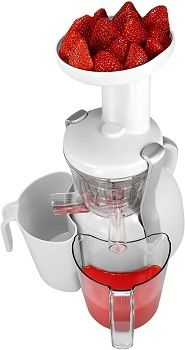 Big Boss 9192 Healthy Press Slow Juicer review