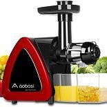 Best 5 Masticating Juicers On The Market In 2021 Reviews